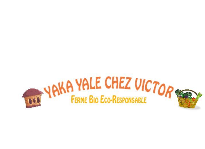 Yaka Yale chez Victor - ferme bio et éco-responsable