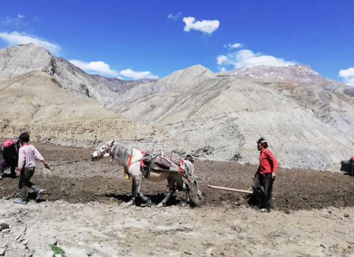 Upper Dolpo, Nepal: 12 Greenhouses for the last guardians of The Himalaya