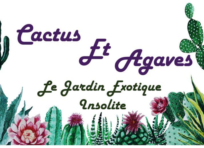 CACTUS ET AGAVES - LE JARDIN EXOTIQUE INSOLITE