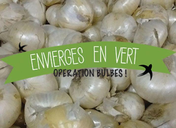 ENVIERGES EN VERT - OPERATION BULBES !