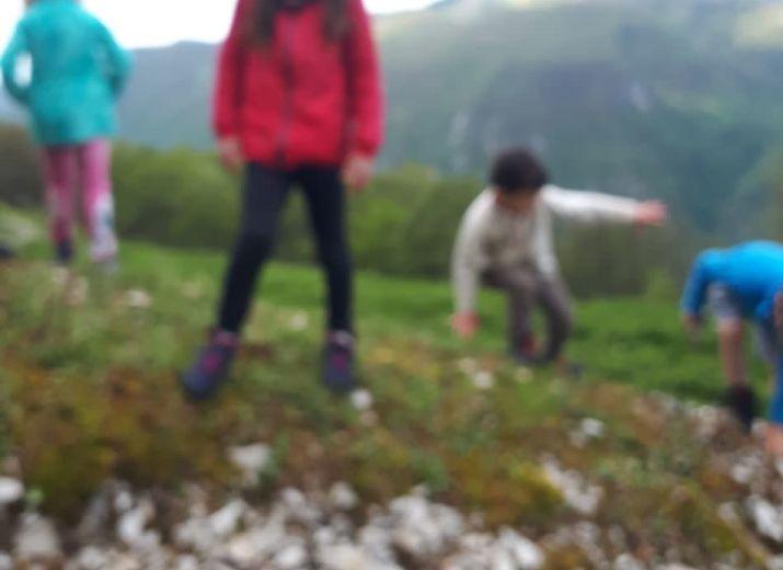 Des séjours à la montagne pour les enfants placés - Faire découvrir la nature