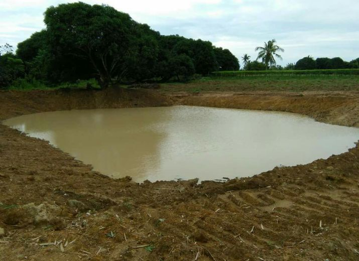 Integrated Farming Trinidad/ Bohol