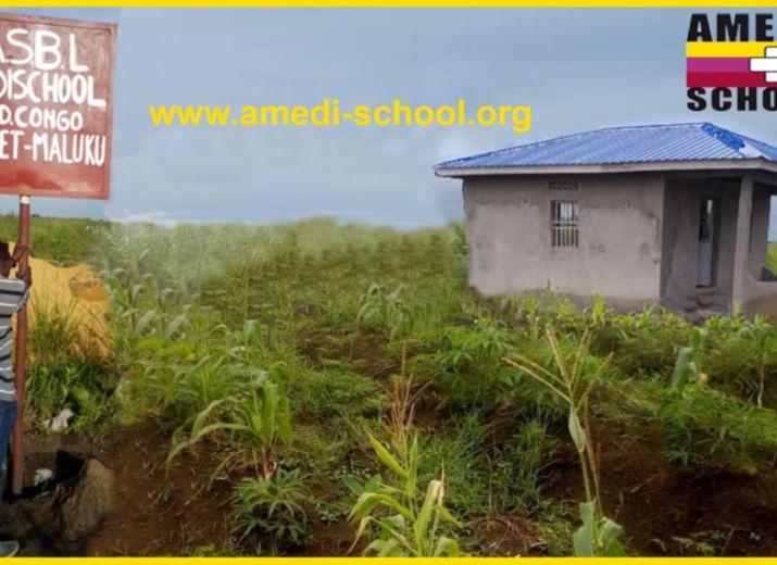 Transport de produits agricoles pour les Orphelins de l'Association Amedischool en RDC