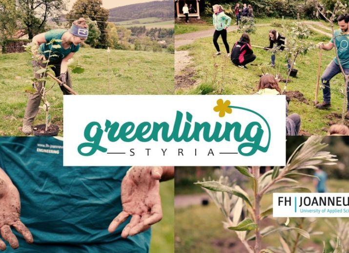 Grünstreifen pflanzen mit greenlining STYRIA