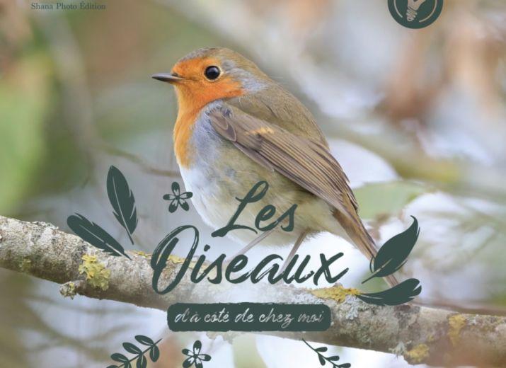 Album de Jeunesse pour DÉCOUVRIR et AIMER les Oiseaux d'à côté de chez vous