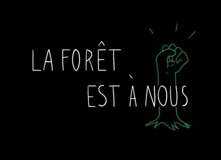 La forêt est à nous