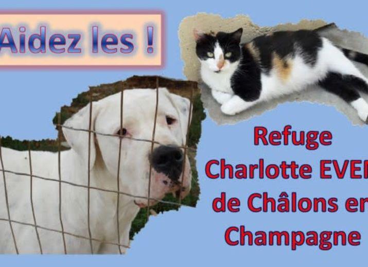 Aidez nos animaux !