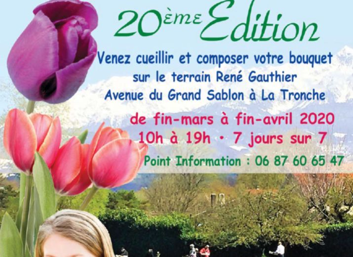 Opération 100 000 tulipes pour les enfants atteints de la maladie du cancer à Grenoble ***** Virtuelles à cause du Covid19 *****