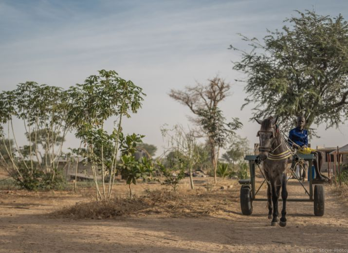 Covid-19 Sénégal - Association JIWNIT