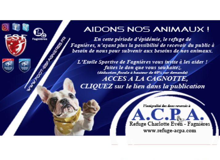 Aidons nos Animaux !