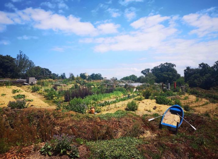 Serre semi-enterrée en permaculture !