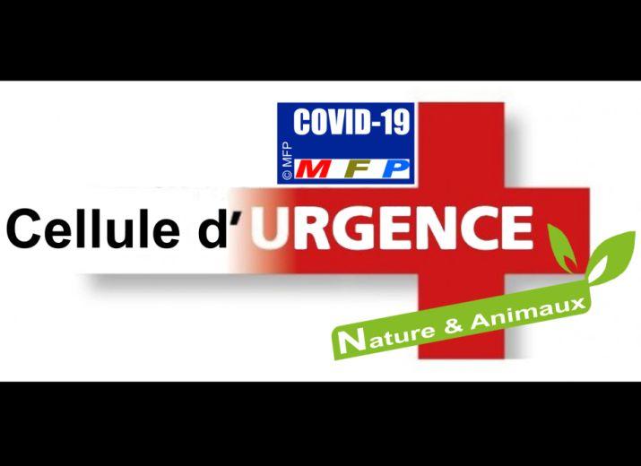 COVID-19-CELLULE D'URGENCE MÉDICALE/MFP
