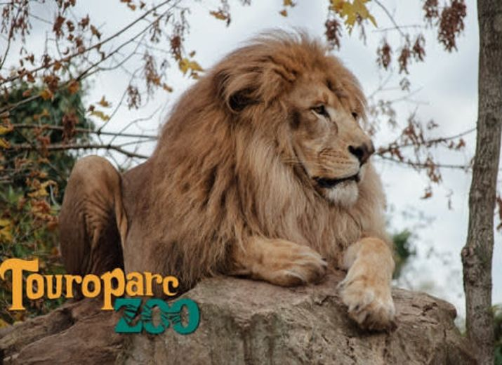 Soutien à Touroparc Zoo