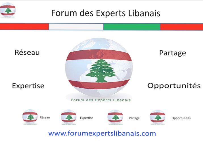 Soutien à distance-COVID-19- la crise économique au Liban et en France