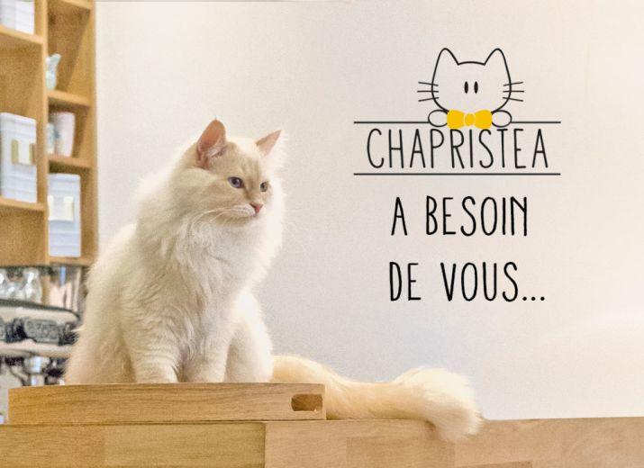 Le Chapristea a besoin de vous...
