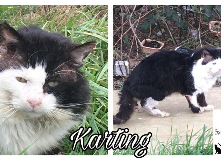 Aidez nous à sauver KARTING