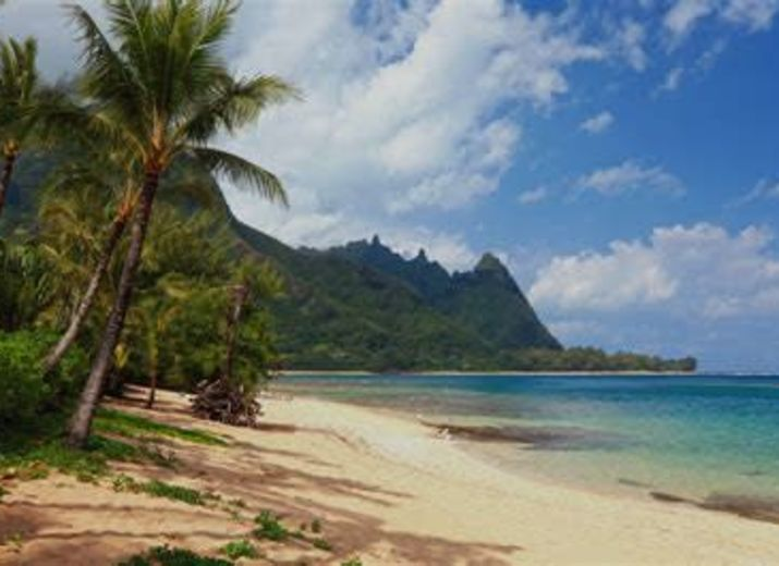 Aloha Hawaii (ou autre gros gros cadeau)