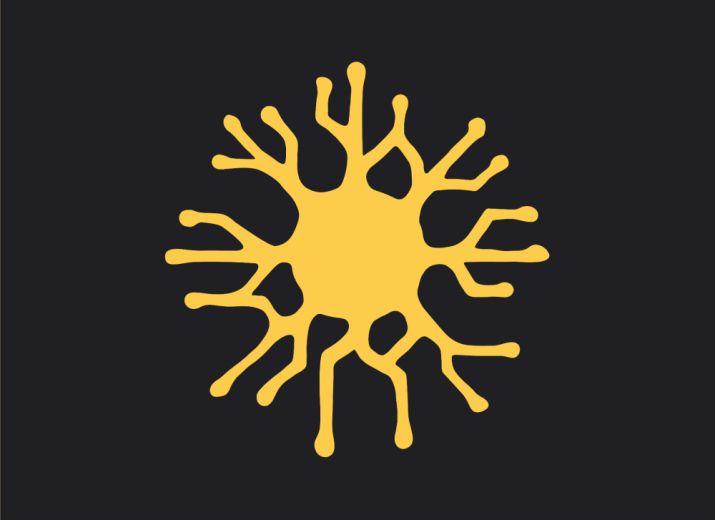 Polycep Wettbewerb