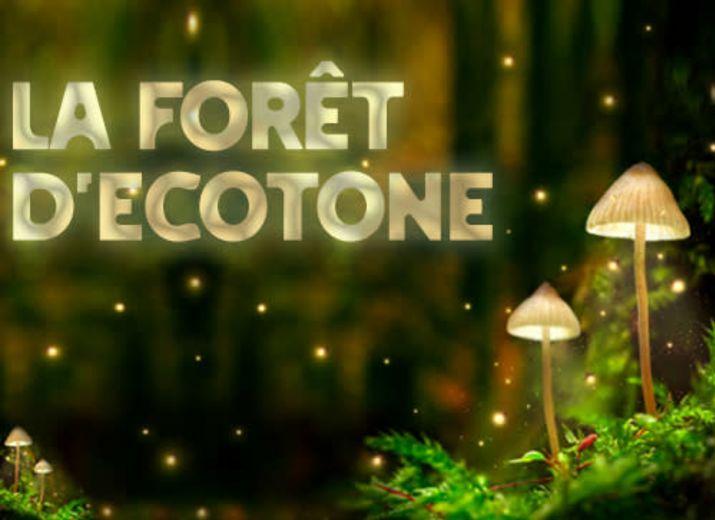 Ecolieu La forêt d'Ecotone