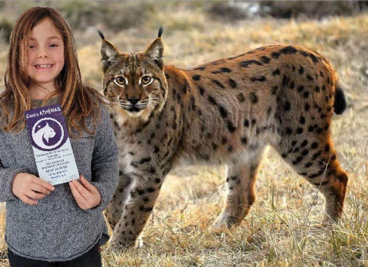 Dehlia aide le lynx