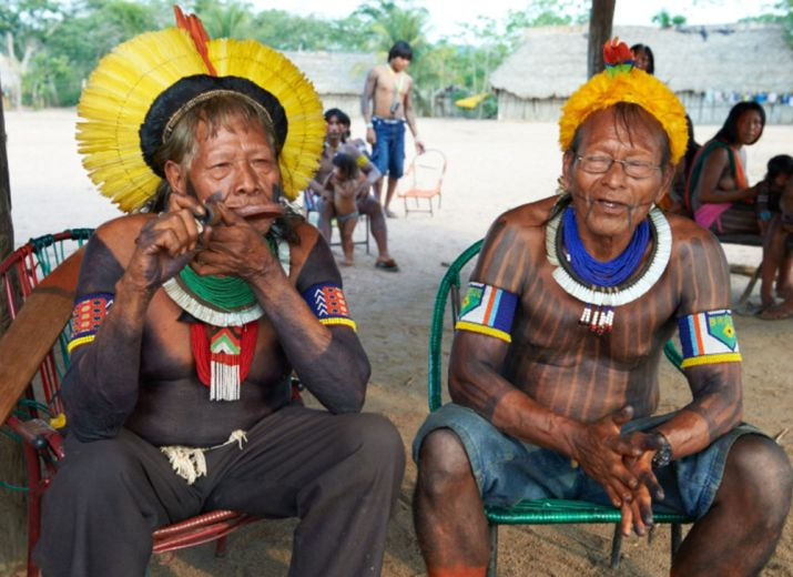 Défendons l'Amazonie: Financement des postes de garde des Kayapos