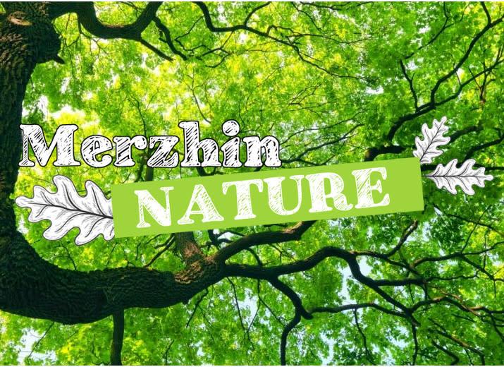 Merzhin Nature - Grimpe d'arbre et éducation à l'environnement
