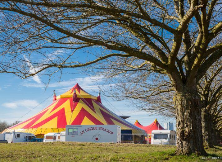 Le Cirque éducatif... Survivre jusqu'à la renaissance