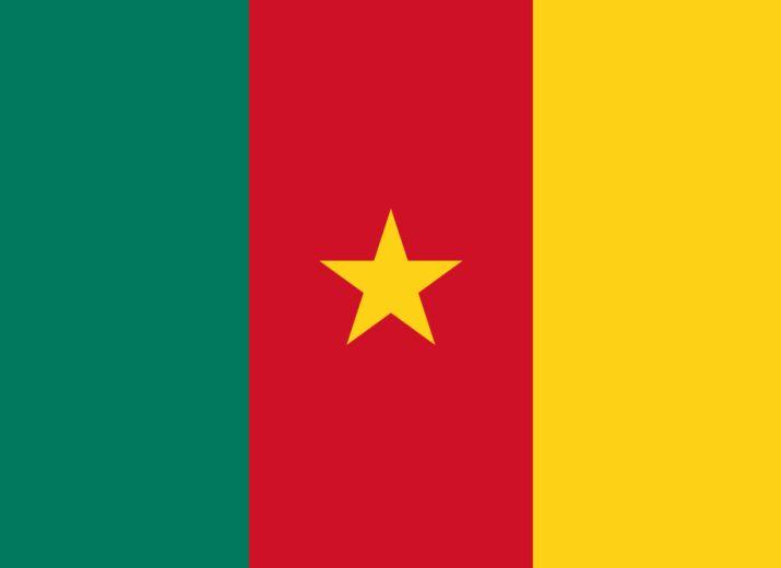 Mission humanitaire au Cameroun 2021