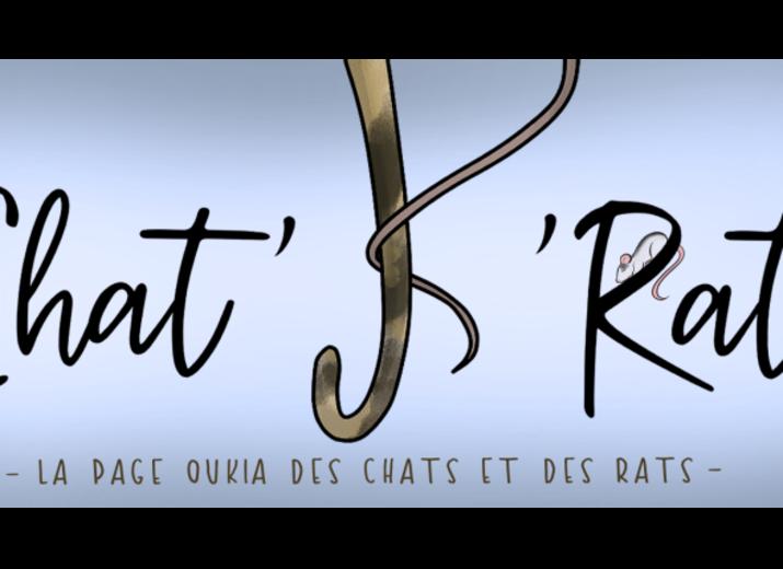 Faire un don à l'association Chat'k'Rat