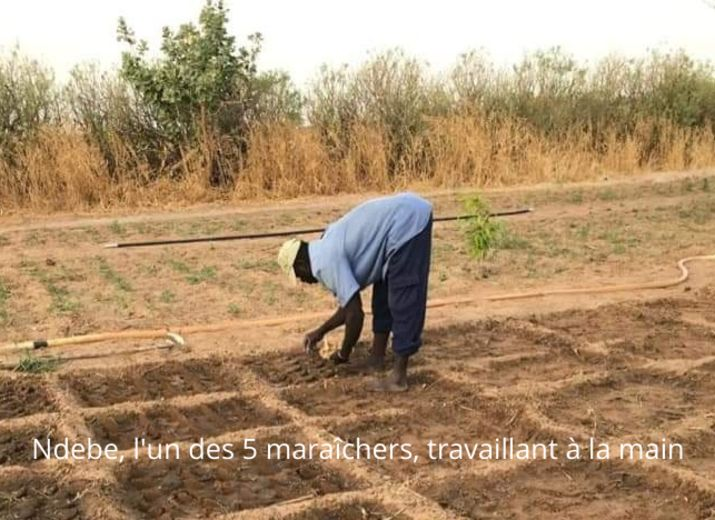 Un tracteur pour les maraîchers sénégalais