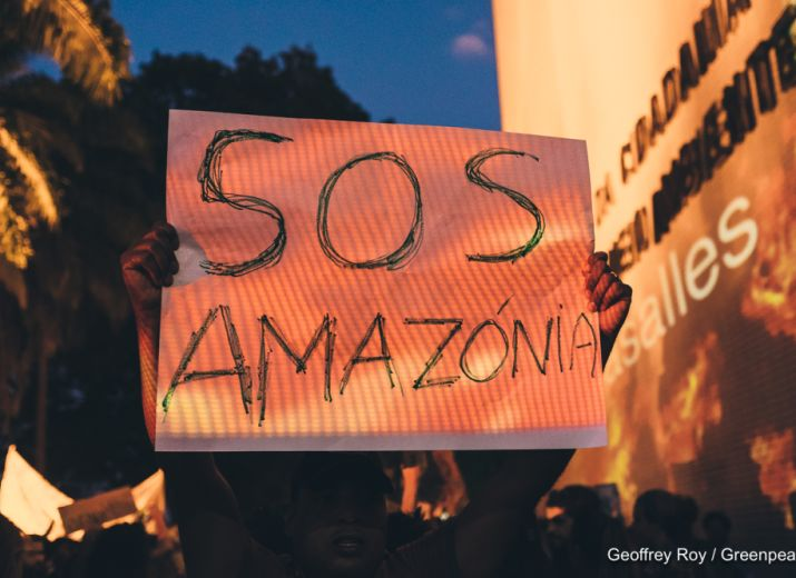 Opération Amazonia