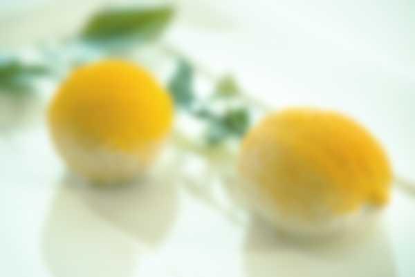 """""""Il Limone"""" - dessert von der Lefay Vital Gourmet örtliche Küche"""