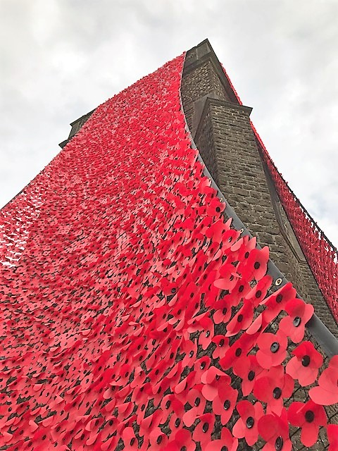 haslemere poppy tower