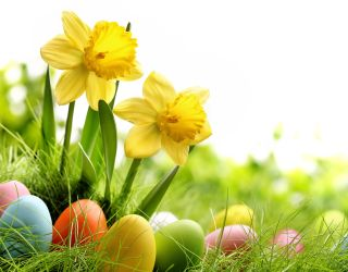 Alton join local Easter Egg Hunt