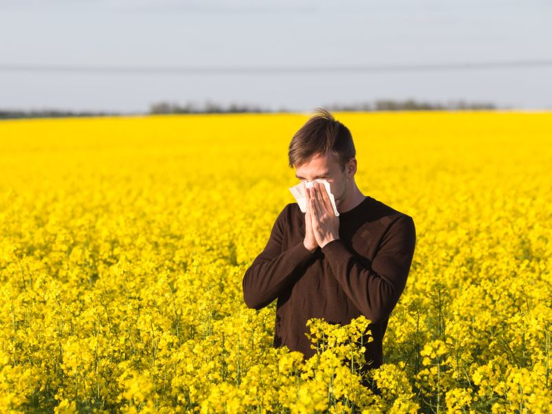 Man blowing nose in field of flowers