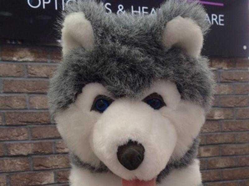 Fur toy dog