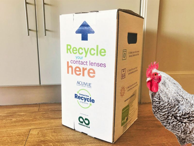 poole-donates-a-live-changing-chicken