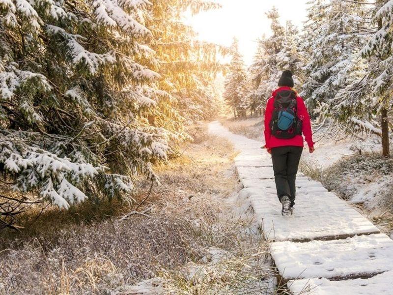 Woman walking on path through snowy woodland