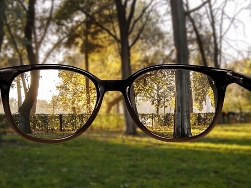 View of woodland through glasses