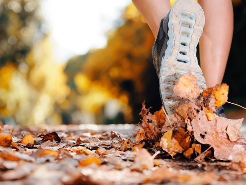 Trainer treading through leaves