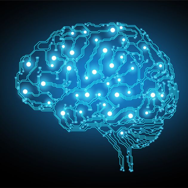 The Deep Neural Network