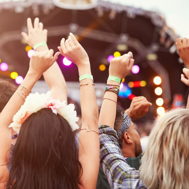 Fans with hands in the air at a music festival