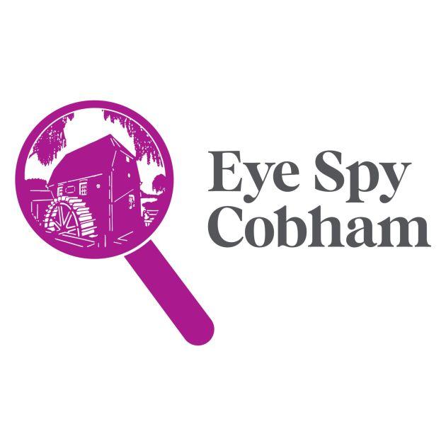 eye spy cobham