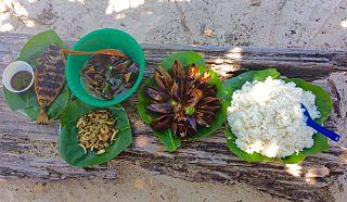 Food Wonders Manila