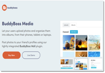 BuddyBoss Media - Media Plugin for BuddyPress