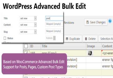 WordPress Advanced Bulk Edit