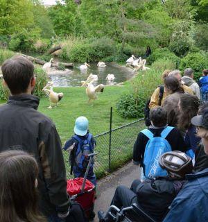 Zoobesuch mit Bewohnern in Basel