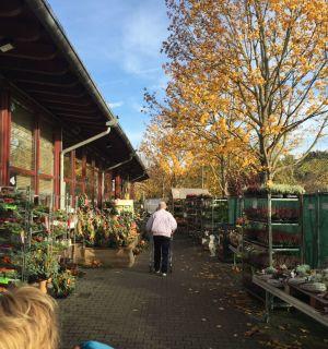 Crêpesverkauf beim Dehner in Haltingen