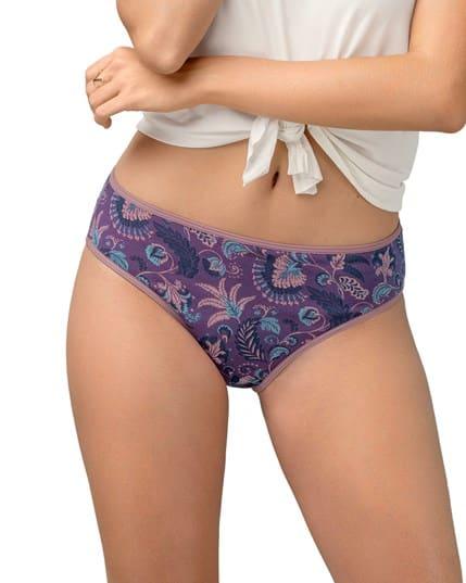 paquete x 3 panties tipo bikini en algodon con total cubrimiento--MainImage
