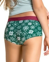 paquete x 5 panties tipo hipster en algodon suave--AlternateView4